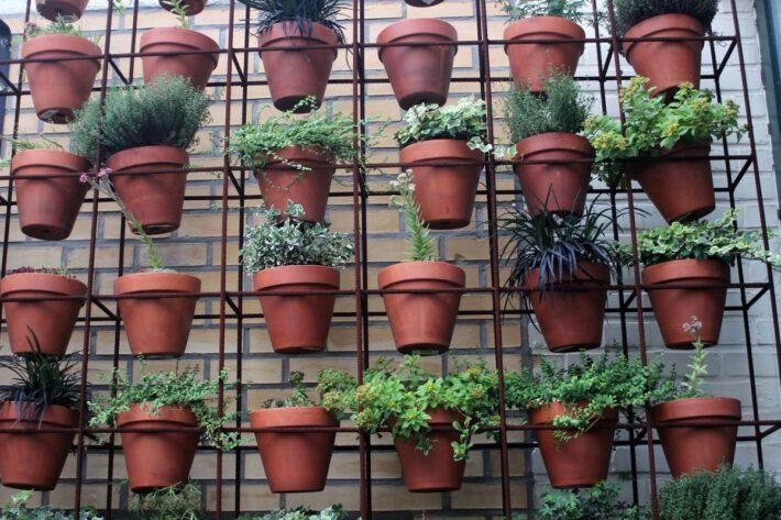 Doniczki z ziołami na urządzonym balkonie