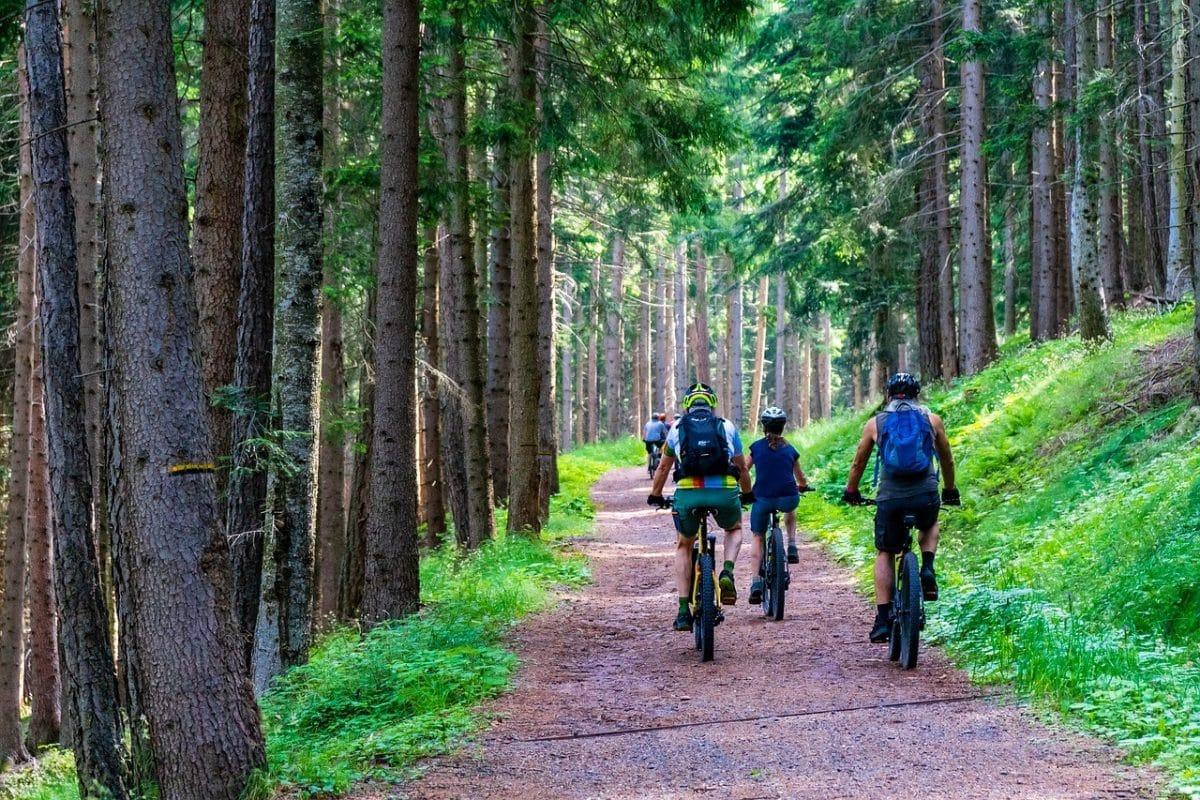 5 rzeczy, na które musisz zwrócić uwagę przy wyborze roweru MTB