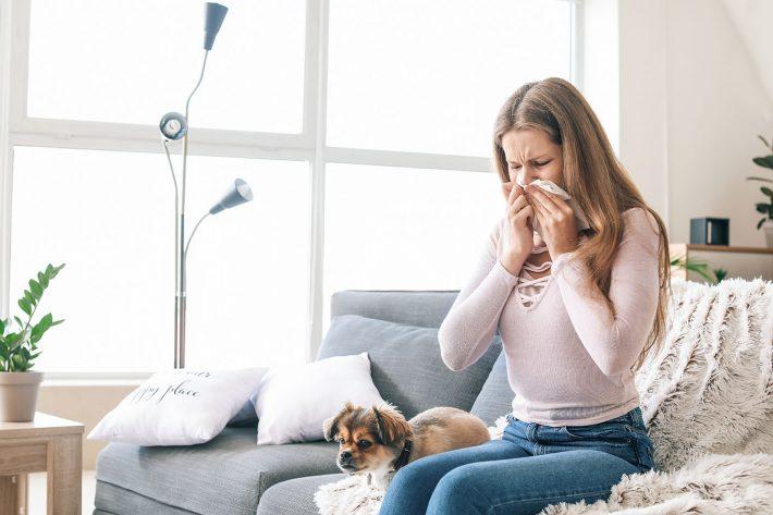 Alergia spowodowana przez roztocza w domu