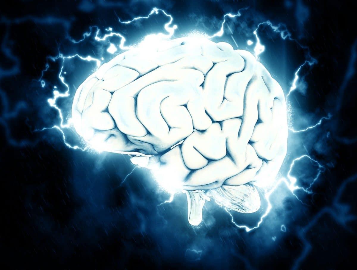 Według nowych badań nawet 20 minut ćwiczeń jest tak samo dobre jak kawa dla naszej pamięci roboczej