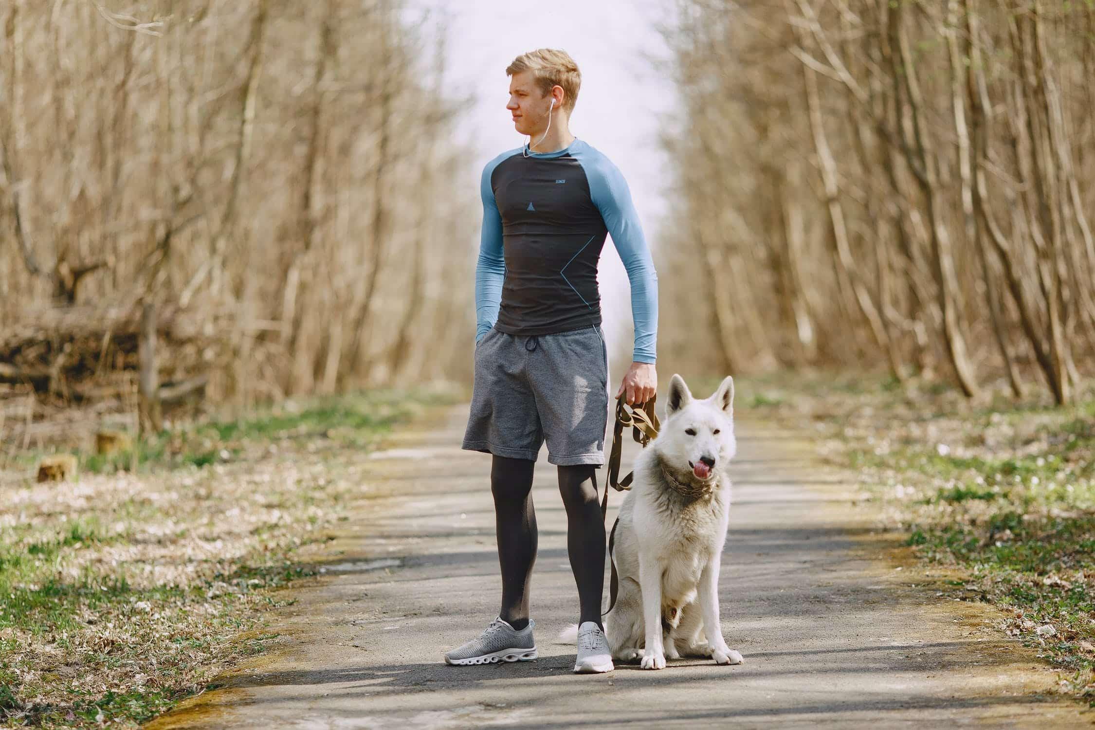 Bieganie z czworonogiem – czego będziesz potrzebować?
