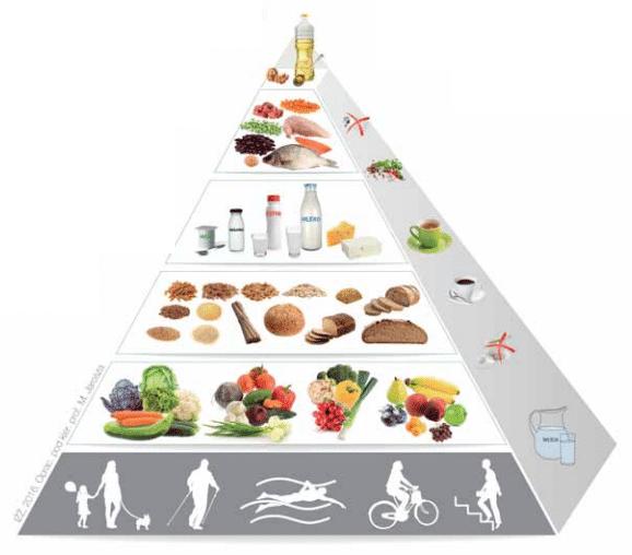 Piramida żywieniowa 2020