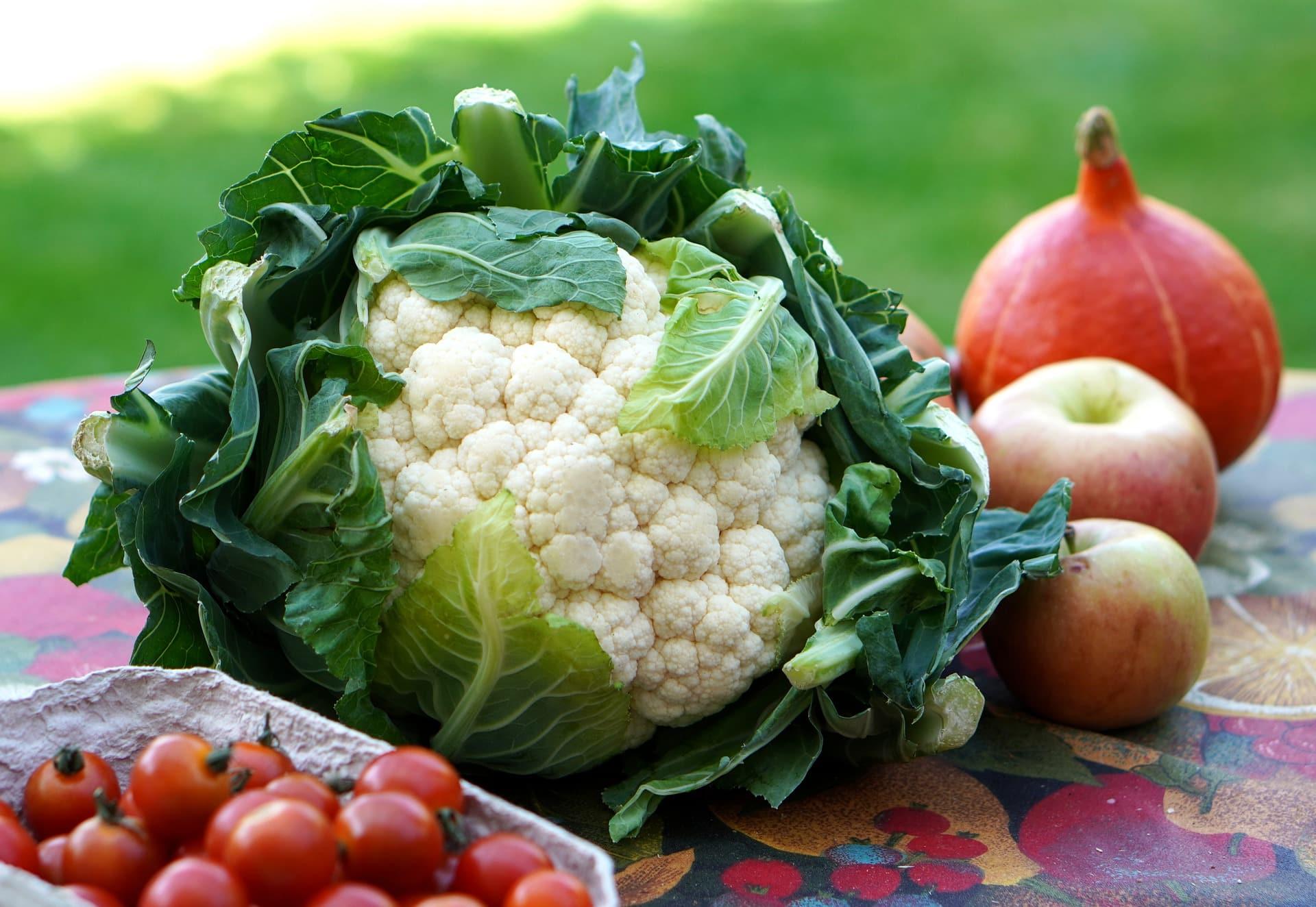 Proste sposoby na warzywa w menu dla dzieci