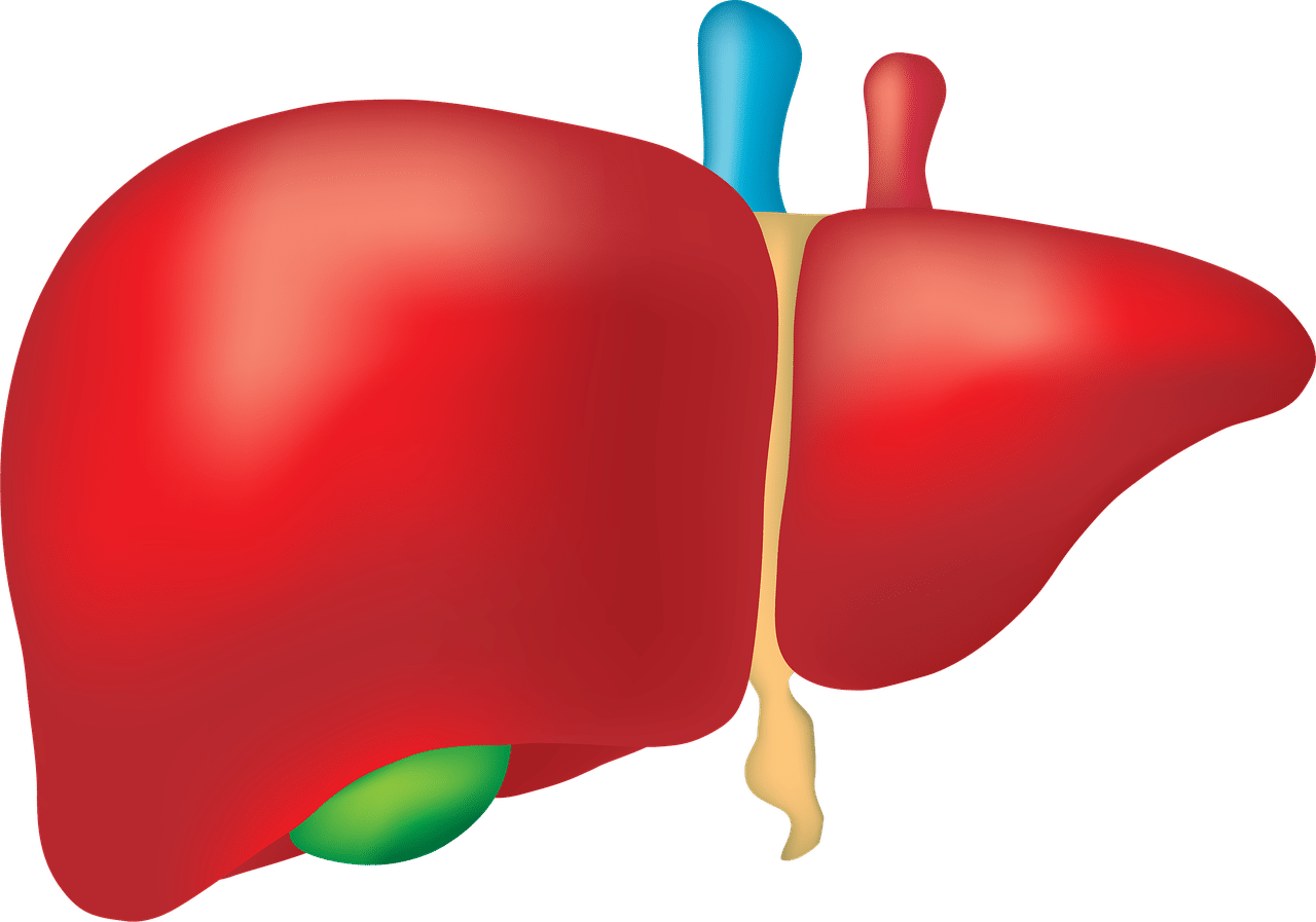 diagnozowanie chorób watroby na podstawie badania AST
