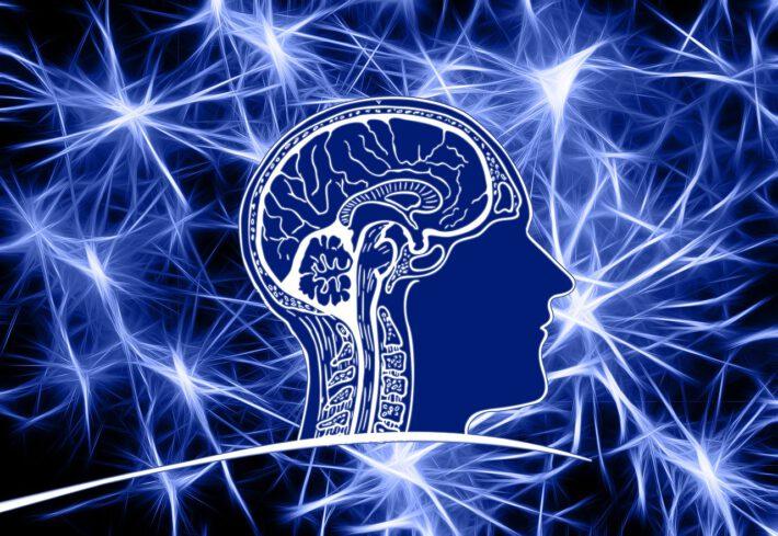 Przeprowadzenie badania EEG głowy