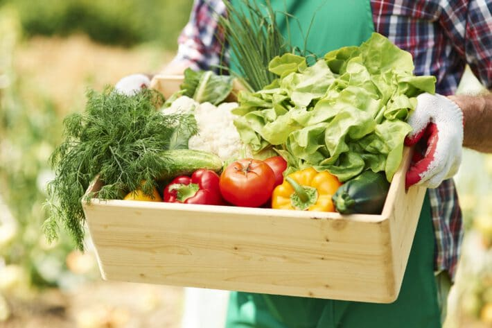 Skrzynka pełna warzyw przeznaczona do zrobienia posiłków dla osób z cukrzycą