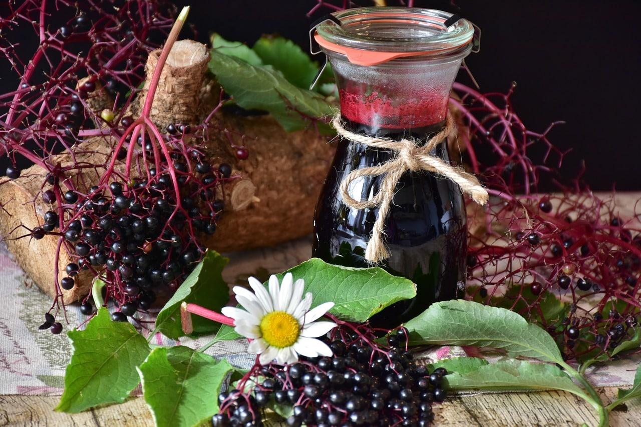 Właściwości soku z bzu czarnego