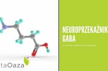 GABA suplement diety