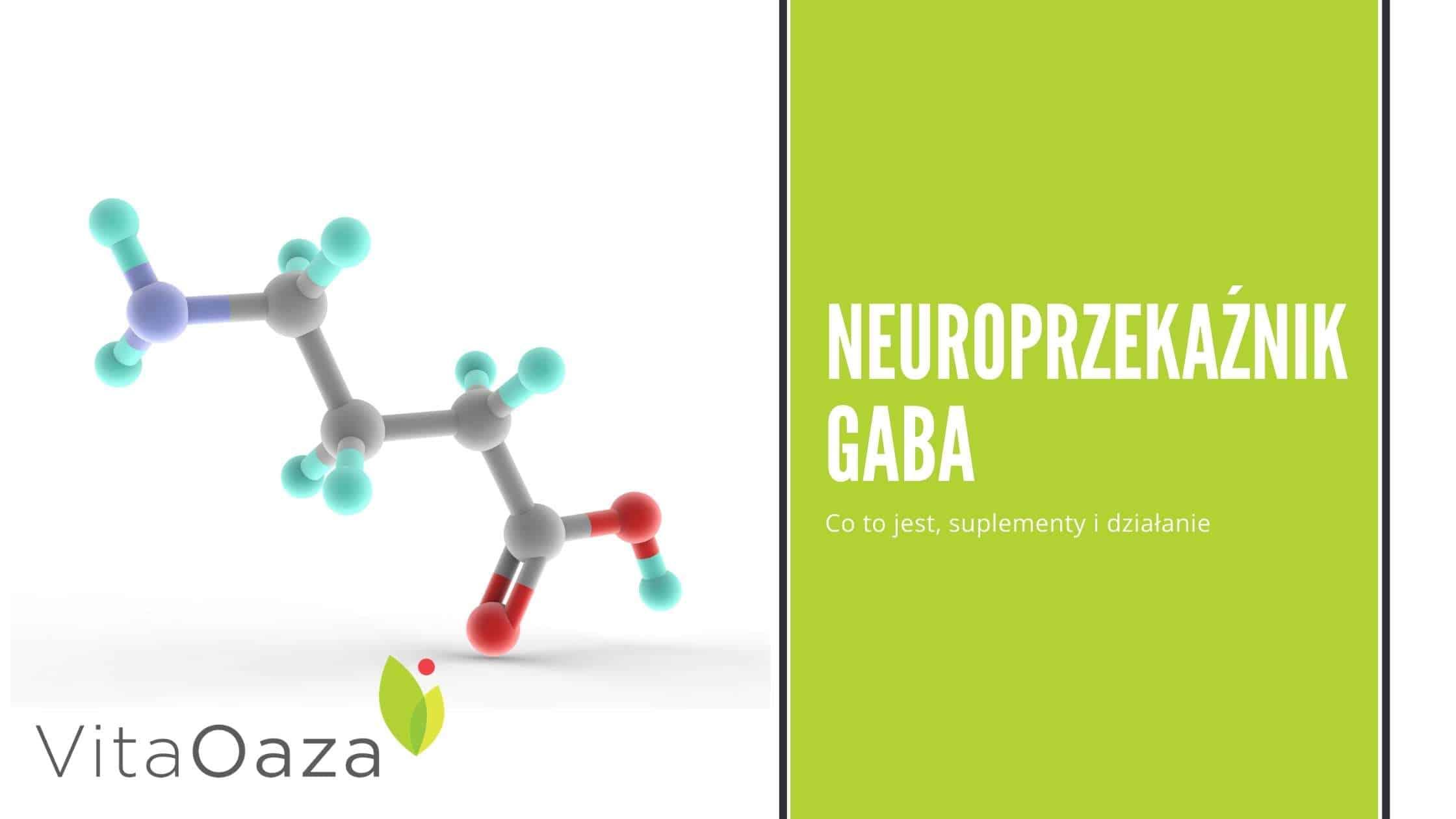 GABA - neuroprzekaźnik. Budowa, działanie, suplementy