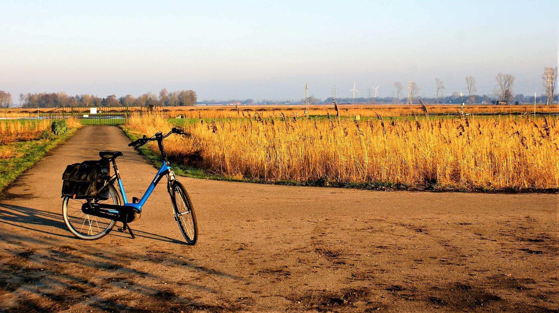 Zestawienie najpopularniejszych typów rowerów